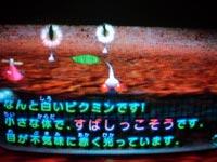 2004_04_29_09.jpg