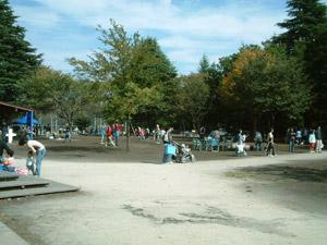 2006_10_15_05.jpg