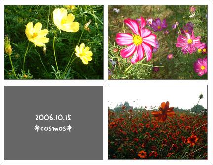 2006_10_15_60.jpg
